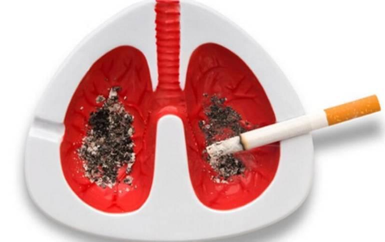 Опасные выды табака