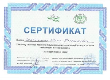 Сертификат Юрия Шафигулина Чистый Путь